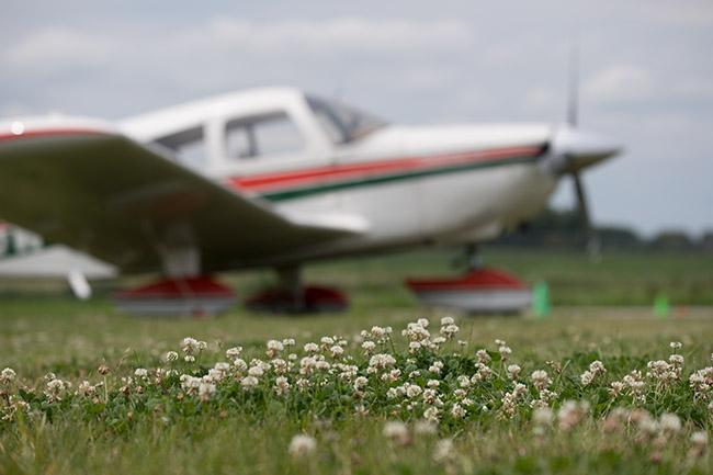 Plane parked in field
