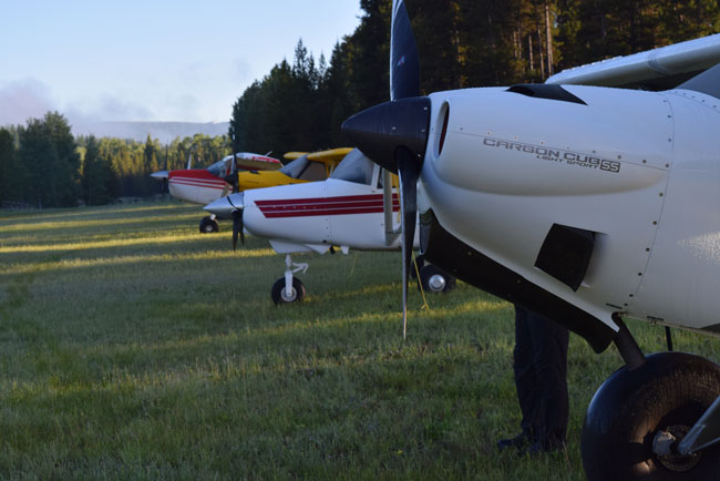 Airplanes for backcountry flying