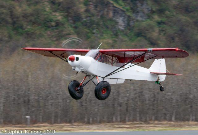 Lukas Stutzer's Piper PA-18