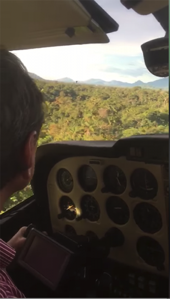 A screenshot from a video showing a pilot land in a jungle.