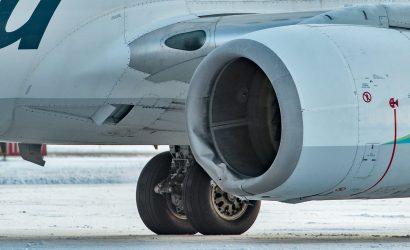 Airplane Hits Bear On Landing In Alaska
