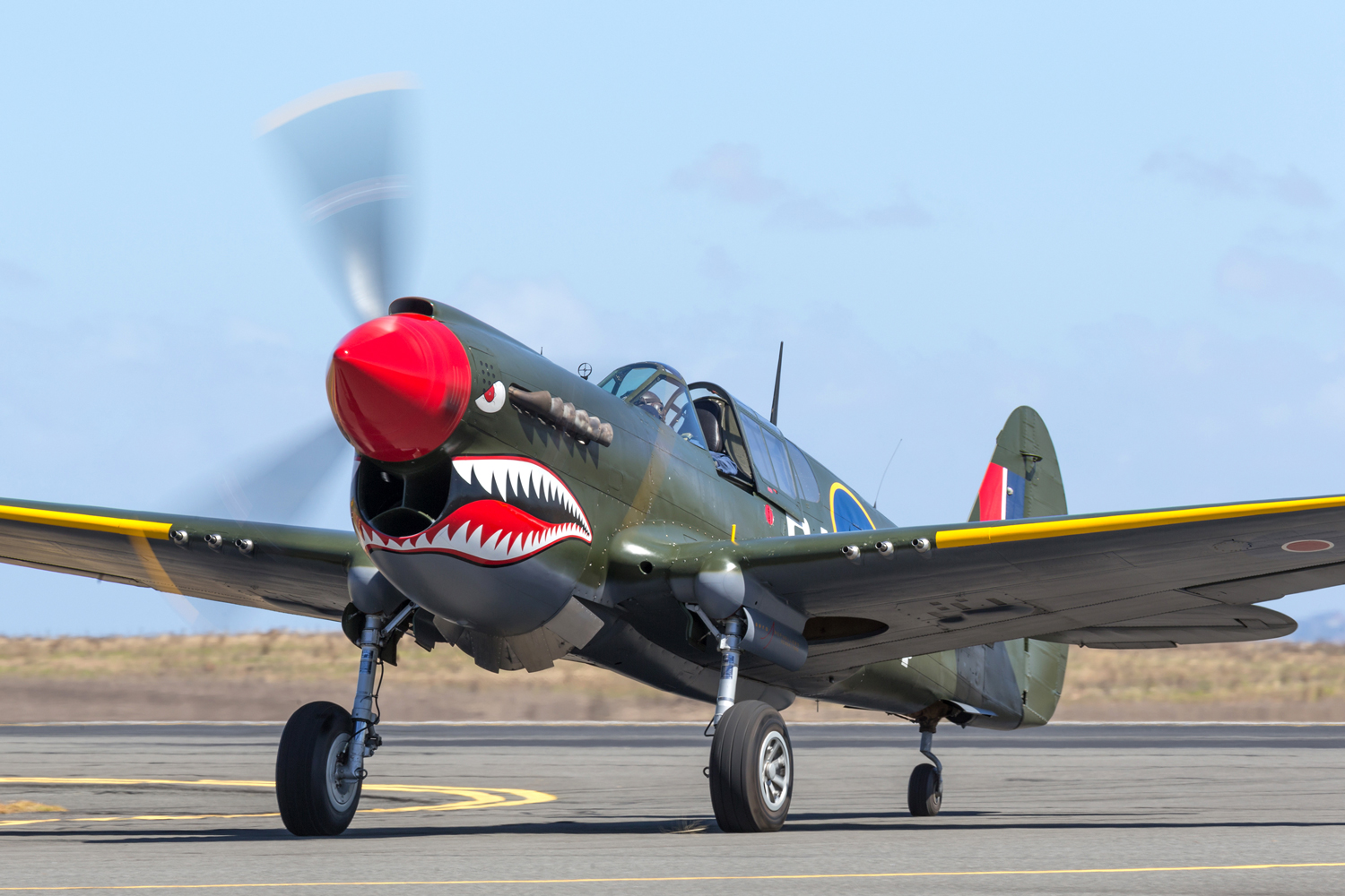 The Future of Warbird Flying