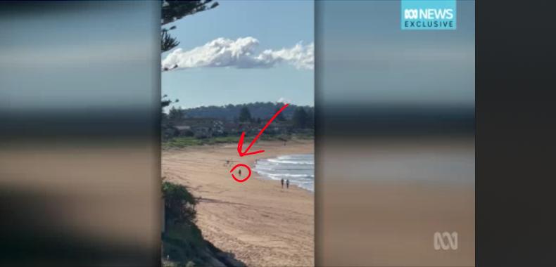 A screenshot of a plane making a no-engine beach landing.