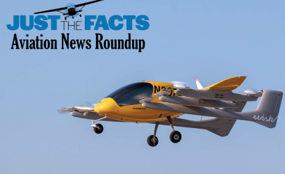 Cicada Madness, A Scary FAA Reading Of A Judge's Ruling On Flight Training, and US aircraft makers are down with future LSA and V-TOLs.