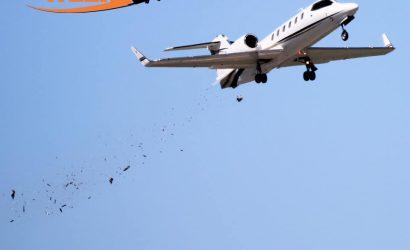 Learjet Bird Strike!