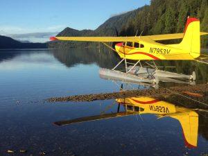 Reflections on Ella Lake